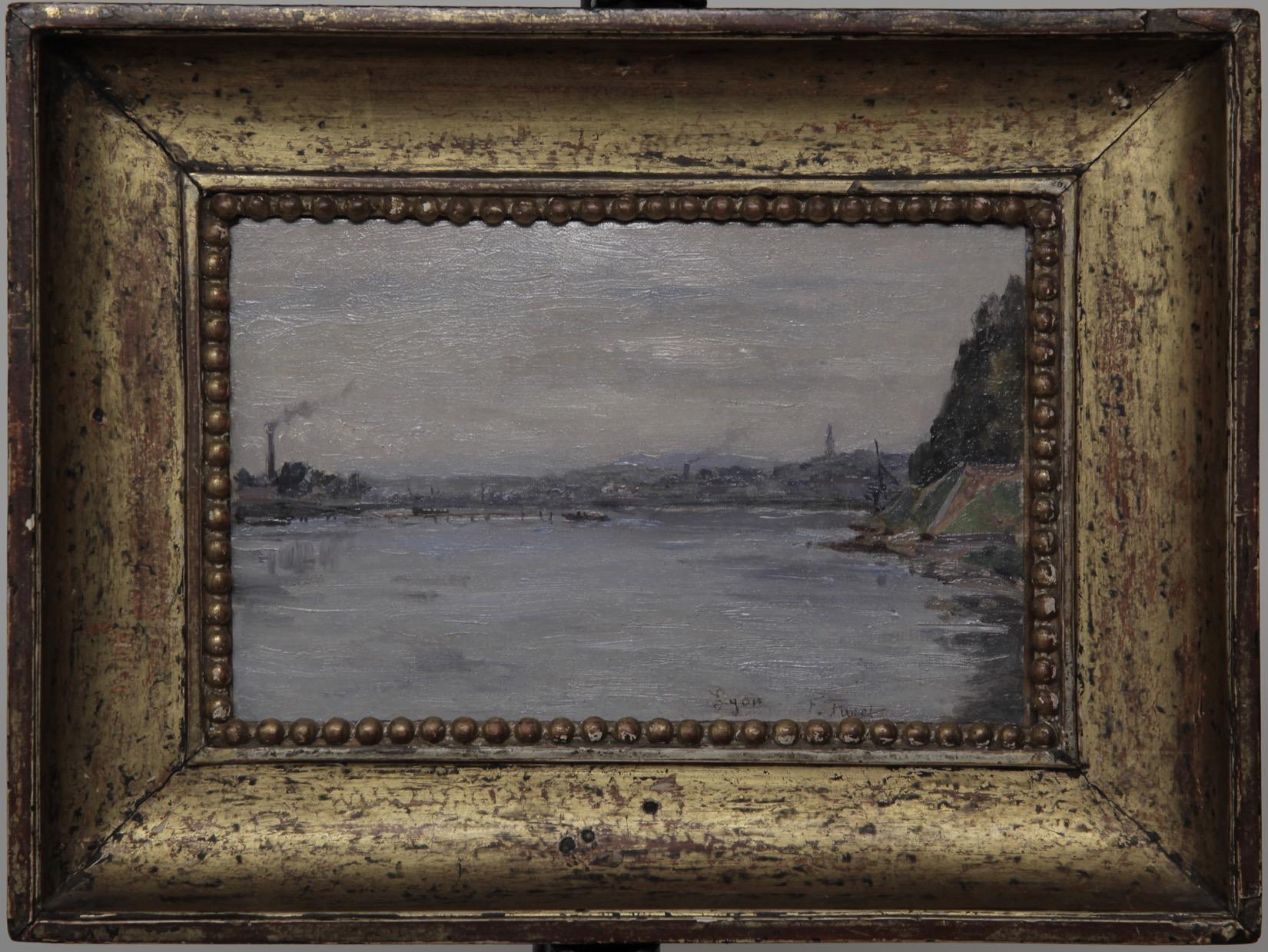 Le Rhône a  Lyon